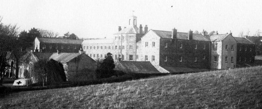 a step back to the workhouse essay